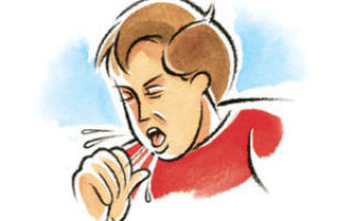 Анализ мокроты: общий микроскопический, расшифровка и нормы, как правильно сдать при туберкулезе, пневмонии, бронхите, алгоритм сбора, сколько нужно откашлять