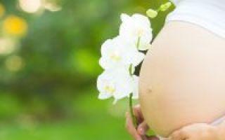 Флюорография при грудном вскармливании, можно ли делать кормящей матери?