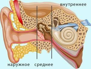 Гнойный отит – симптомы и лечение у взрослых