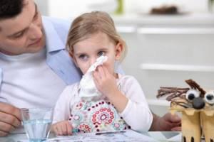 Народные средства от гайморита: отзывы о самых эффективных, можно ли вылечить эту болезнь, примеры рецептов с алоэ, маслами, с каланхоэ, корнем цикламена