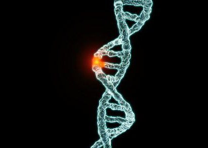 Гамартома легкого – что это за болезнь, причины возникновения и способы лечения