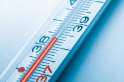 Горчичники при температуре: при каком показателе можно ставить, почему нельзя и что будет, если сделать процедуру взрослому при 37 градусах С