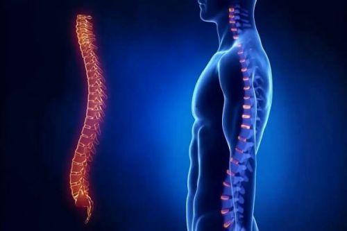 Рентген органов грудной клетки: что показывает, как часто можно делать, где сделать?