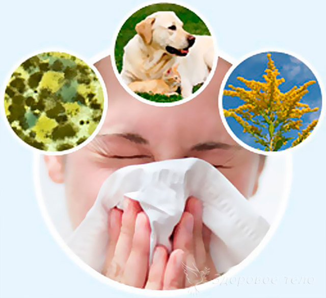 Аллергический ринит: симптомы и лечение у взрослых и детей
