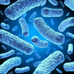 Менингит: что это такое, бактериальные (туберкулезная, стафилококковая) и другие причины, реактивное течение болезни, лечение, последствия, как передается