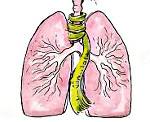 Трахеобронхит: инфекционный и аллергический, обструктивный, острое и хроническое течение болезни, симптомы, лечение у детей и взрослых, антибиотики, ингаляции